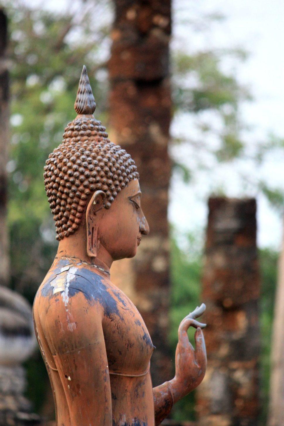 Drevenná suška Budhu
